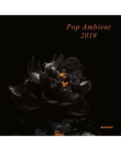 Various - Pop Ambient 2019