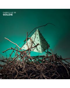 Goldie - FabricLive 58