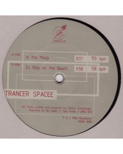 Trancer Spacee - In The Moog