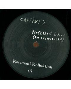 Denis Karimani - Processed Island